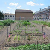 conshohocken-community-garden-3