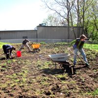 conshohocken-community-garden-setting-up-the-garden-2