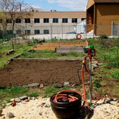 conshohocken-community-garden-water