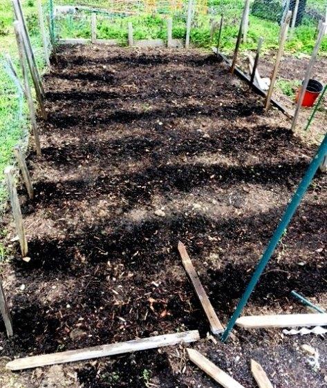 Conshohocken Community Garden Planted 1